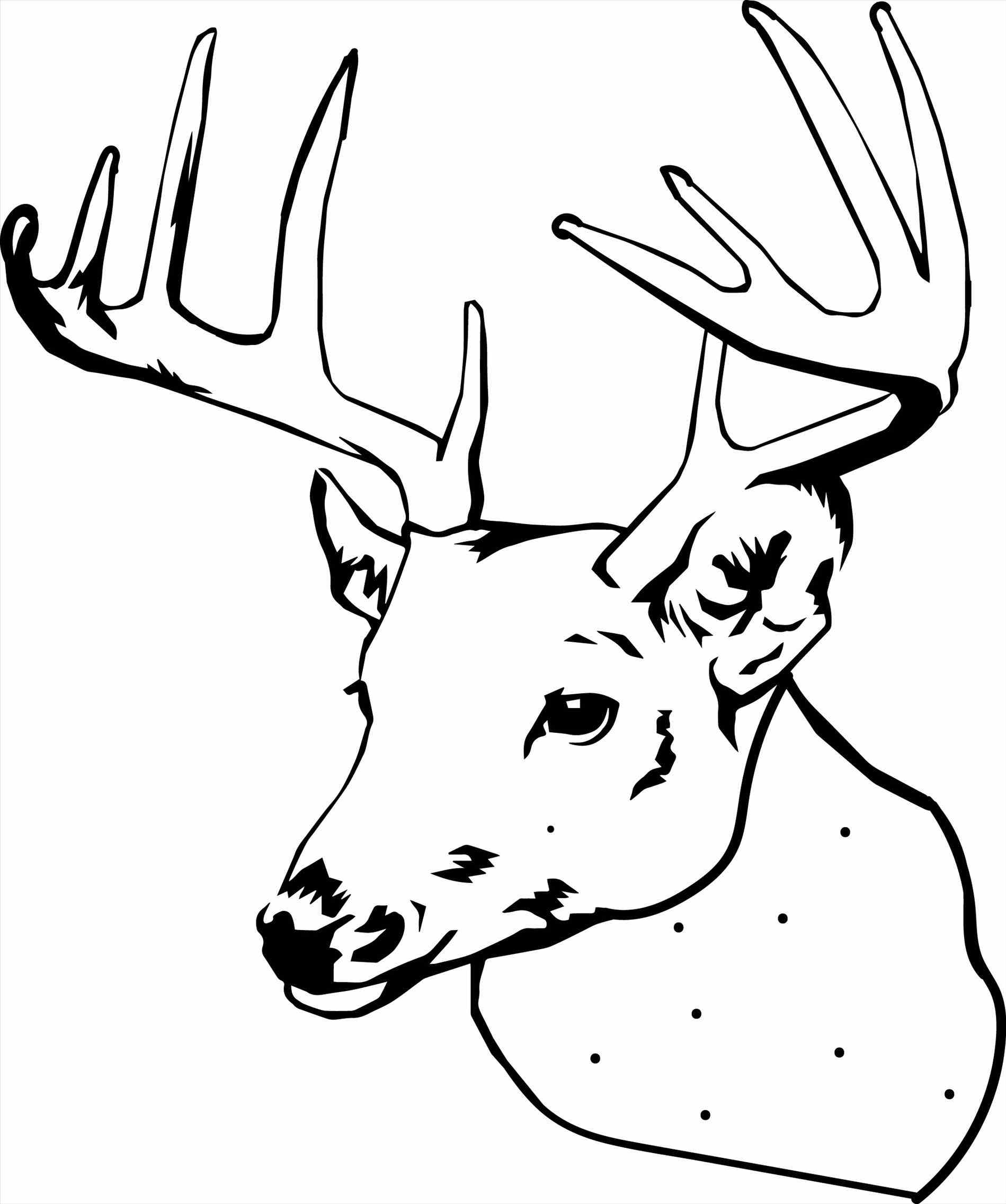 Deer Coloring Pages Coloring Design Deer Coloring Pages Free Download Best On