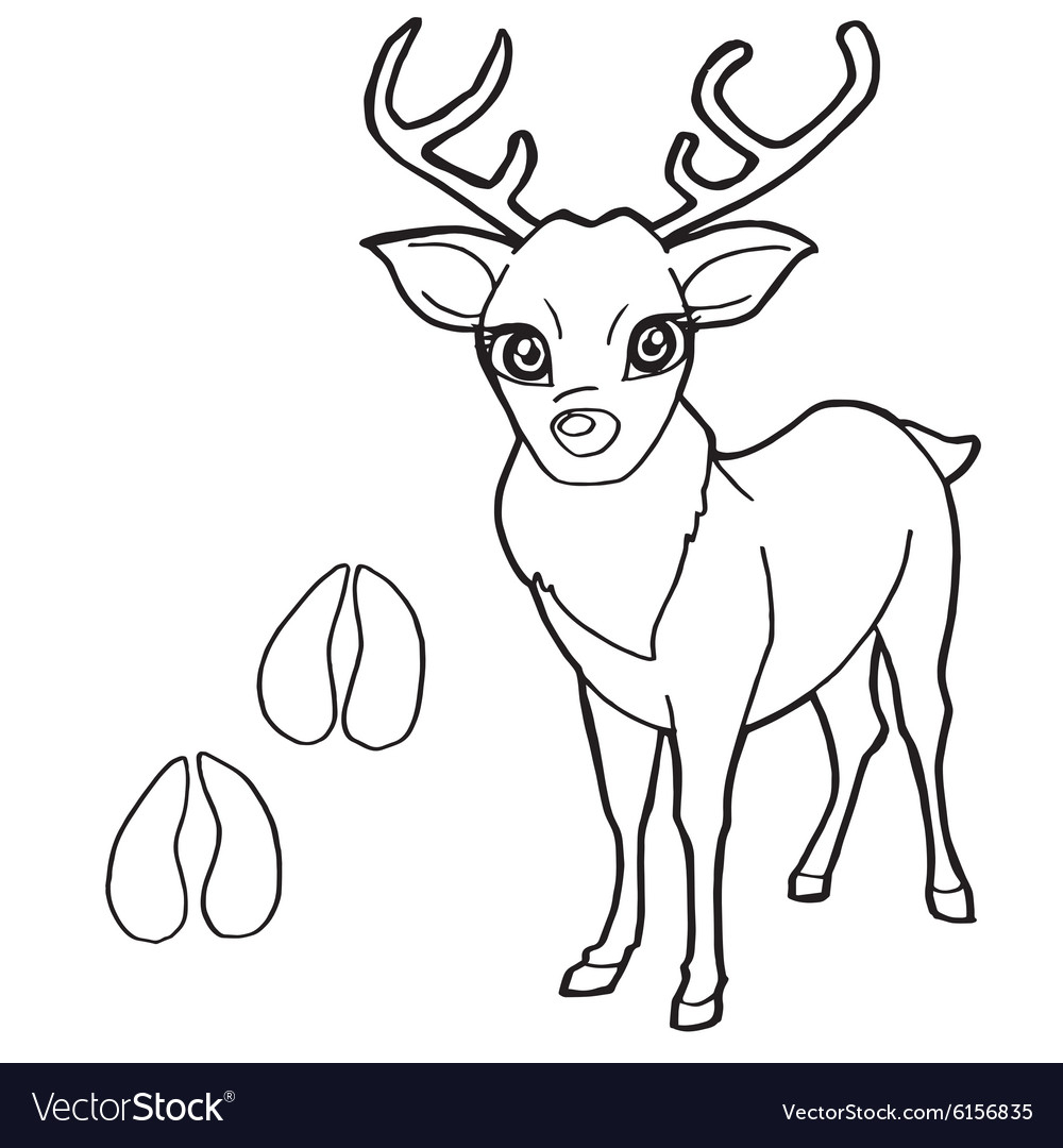 Deer Coloring Pages Paw Print With Deer Coloring Pages