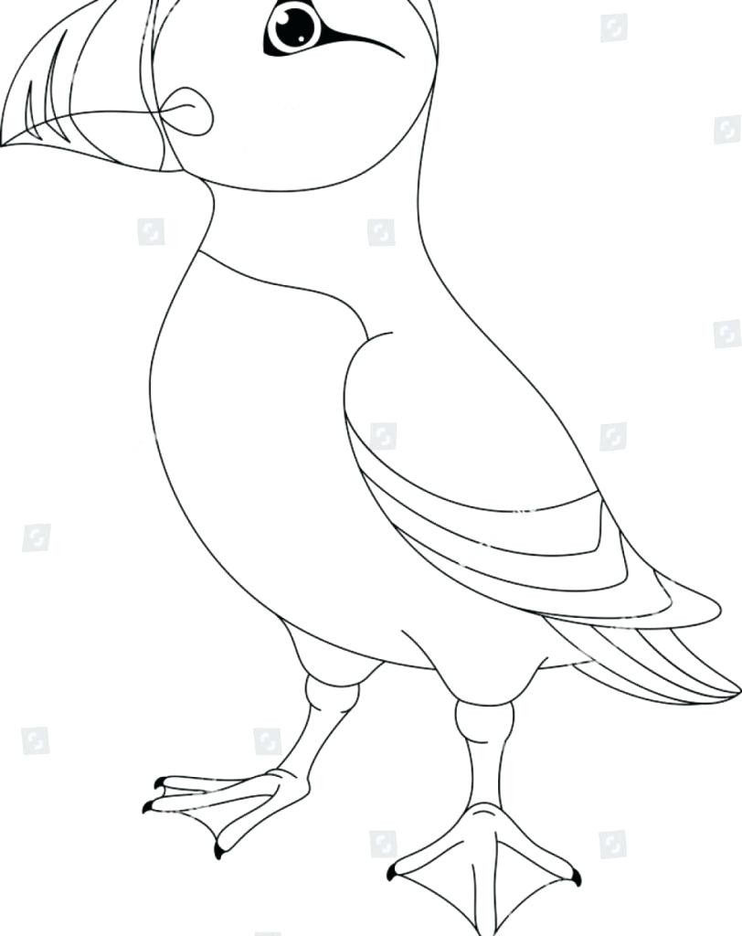 Pretty Picture of Rock Coloring Page - vicoms.info