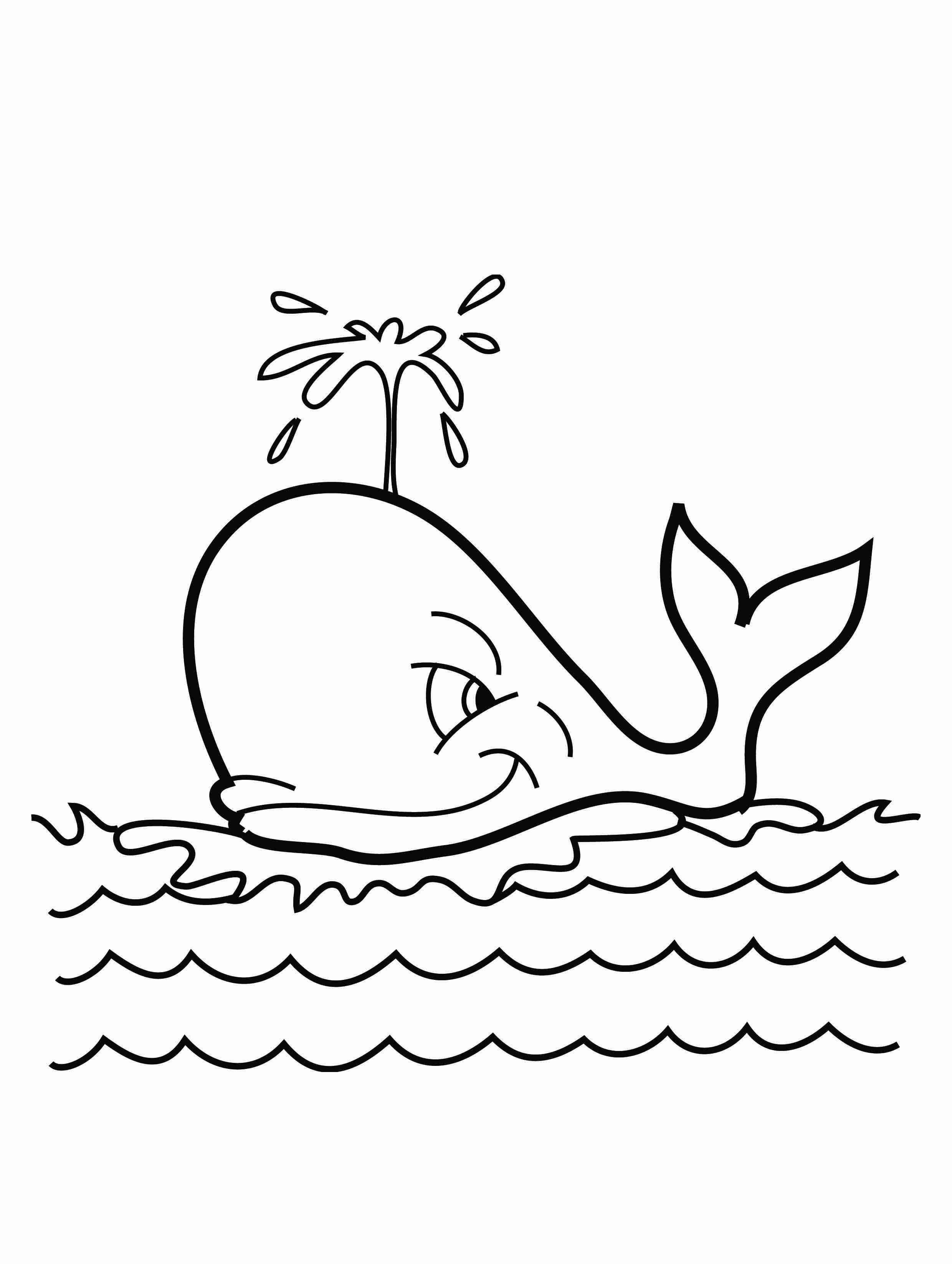 Shamu Coloring Pages Killer Whale Coloring Pages For Kids At Getdrawings Free For