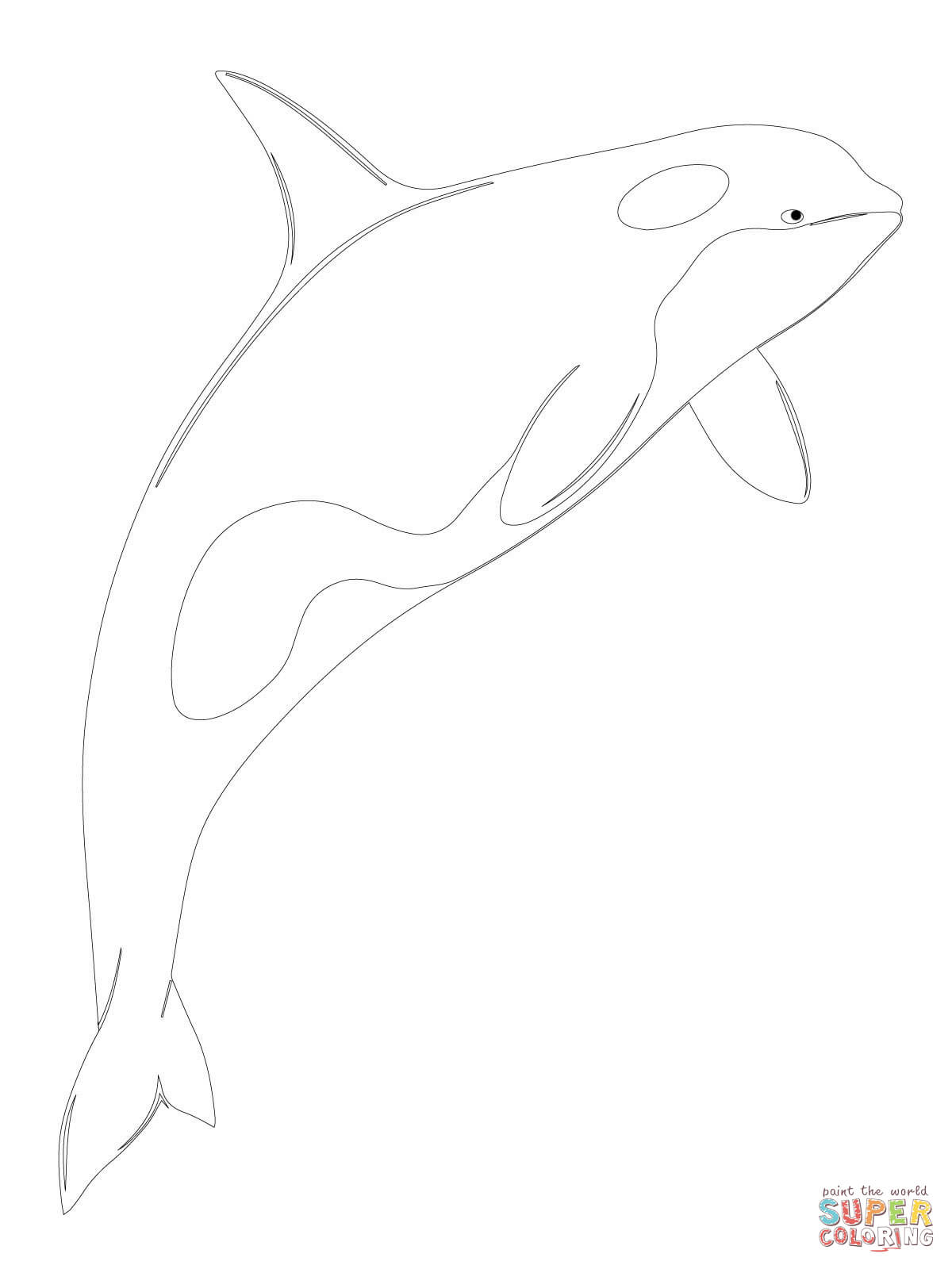 Shamu Coloring Pages Orca Whale Shamu Coloring Page Free Printable Coloring Pages