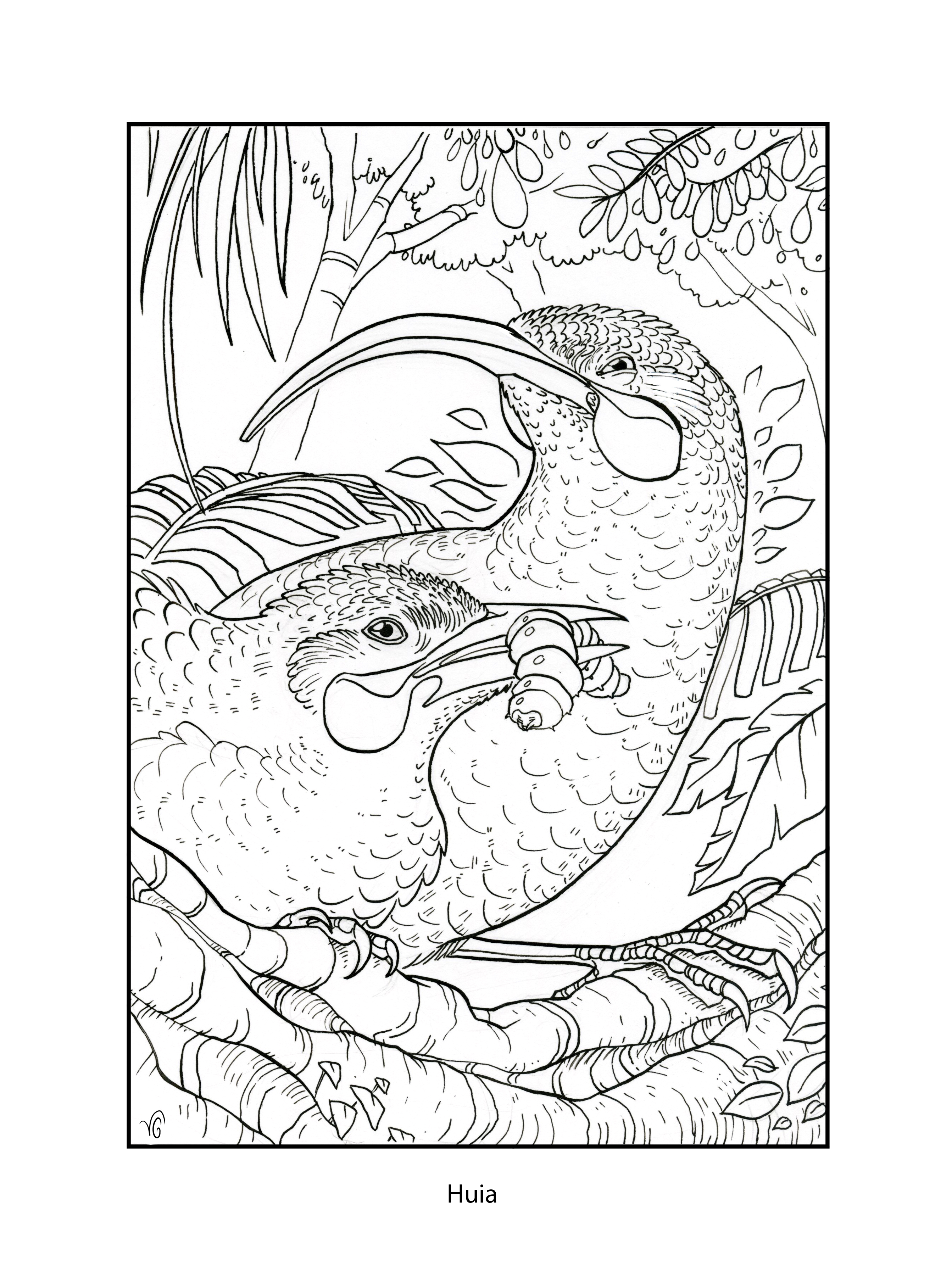 The Very Clumsy Click Beetle Coloring Pages Blast From The Past K 12 Education K 12 Education