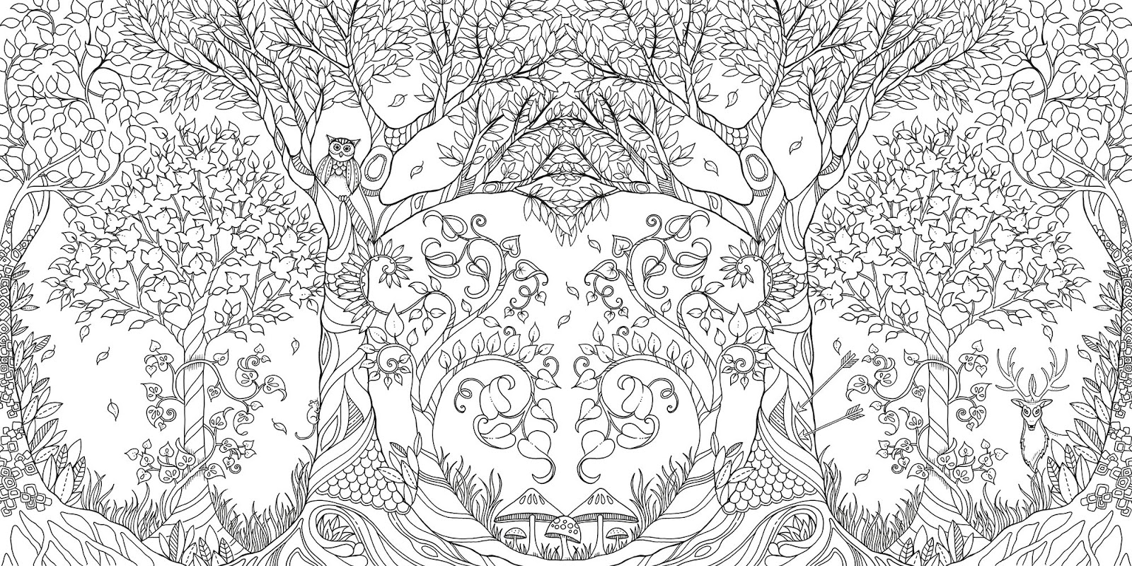The Very Clumsy Click Beetle Coloring Pages Grown Up Coloring Books Are Here The Backyard Naturalist