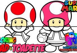 Toad And Toadette Coloring Pages How To Color Toad And Toadette Super Mario Nintendo Coloring Page