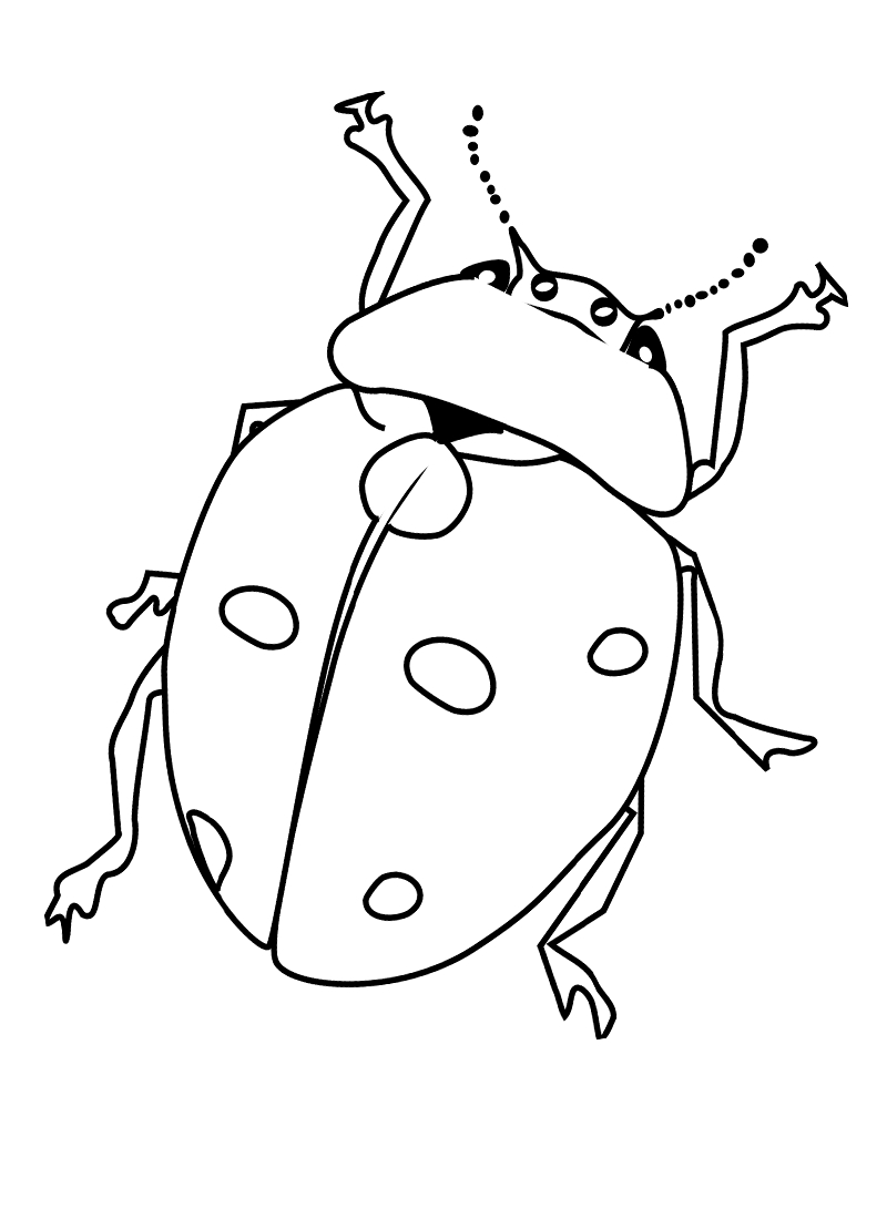 Bug Coloring Pages For Kids Free Printable Bug Coloring Pages For Kids