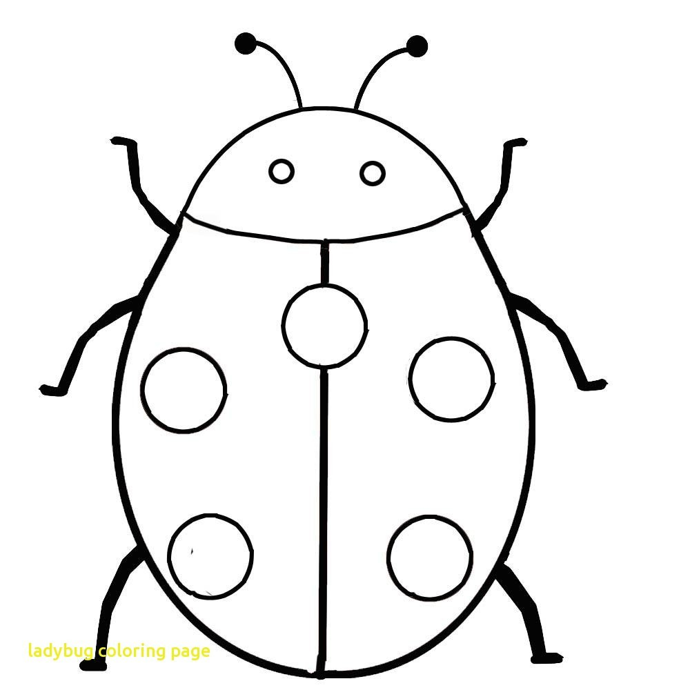 Bug Coloring Pages For Kids Unparalleled Ladybug Picture To Color Lady Bug Coloring Sheet Haci