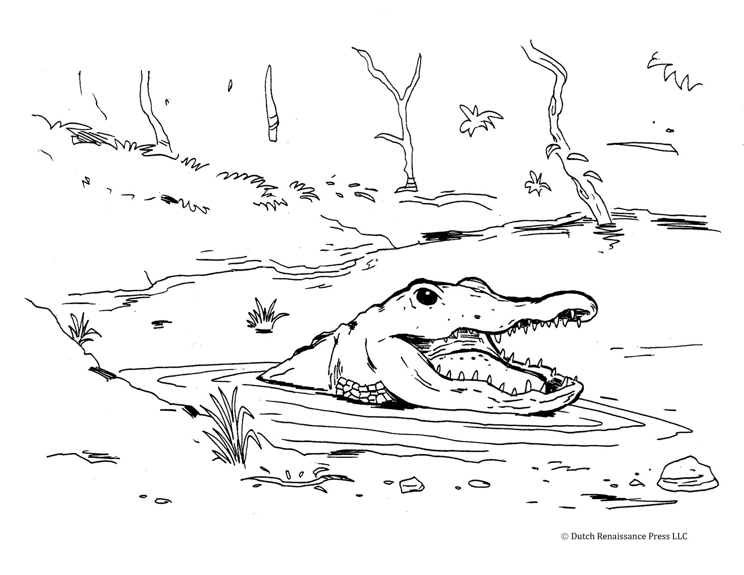 Coloring Page Alligator Alligator Coloring Pages For Kids