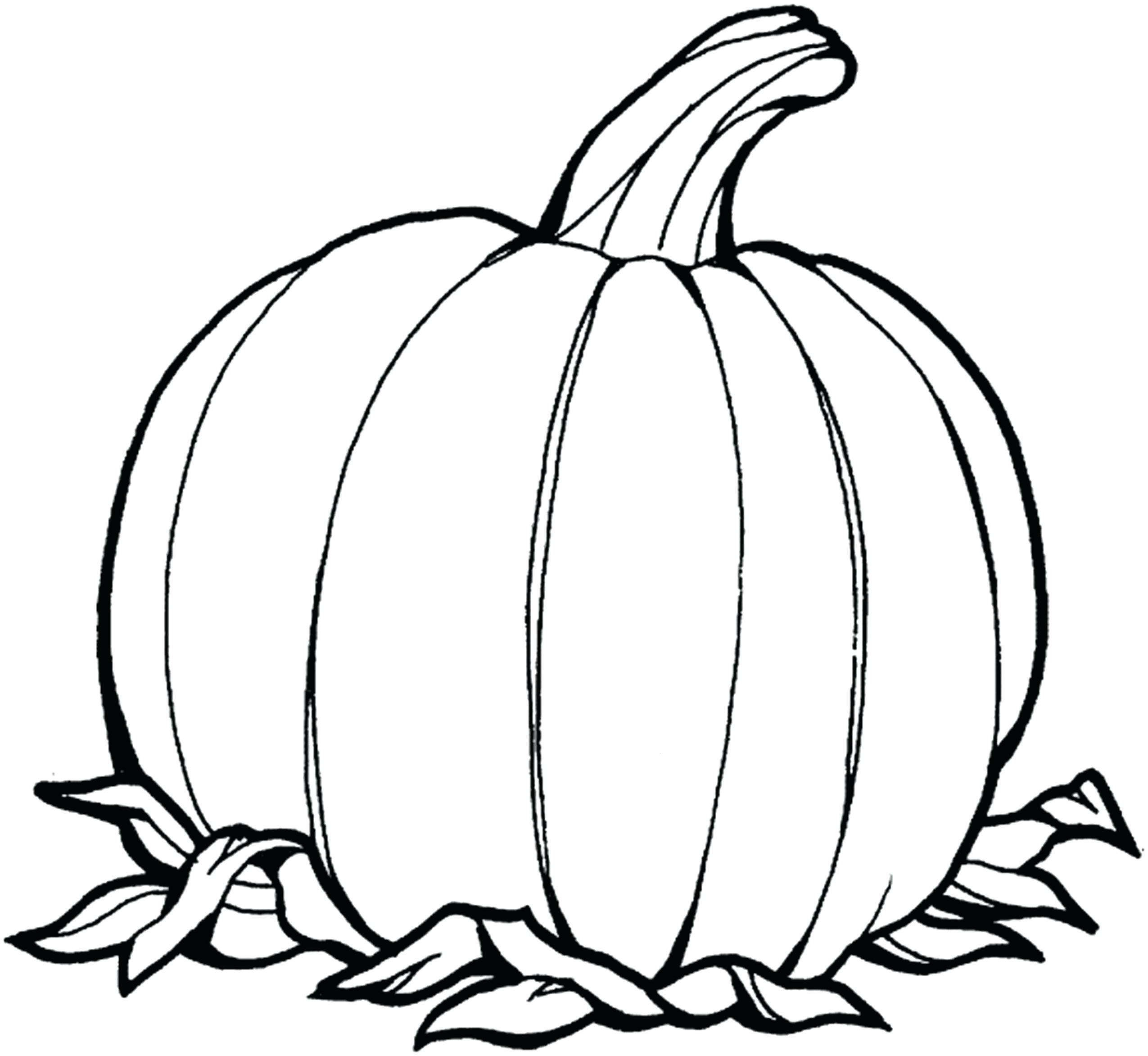 Coloring Page Of Pumpkin Coloring Pages Coloring Pages Simple Pumpkin Pageeen For Adults