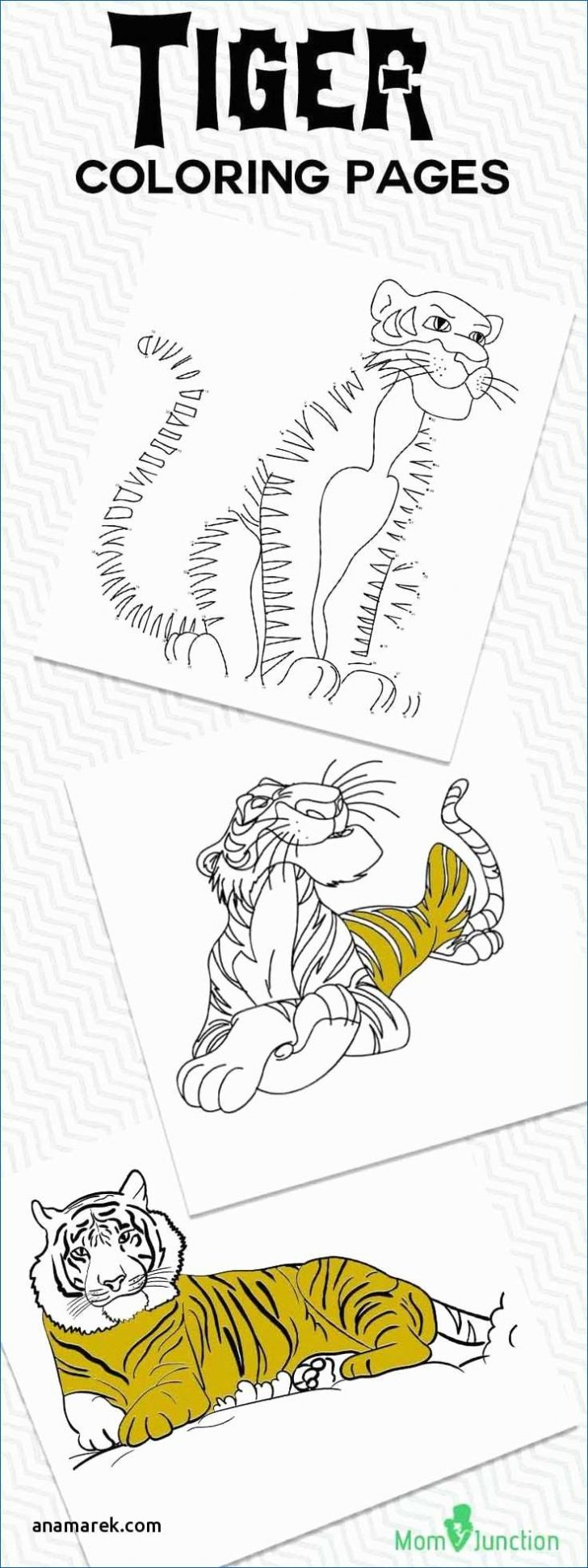 Crayola Fish Coloring Pages Coloring Pages Full Size Of Coloring Book Ideas Tremendous Human