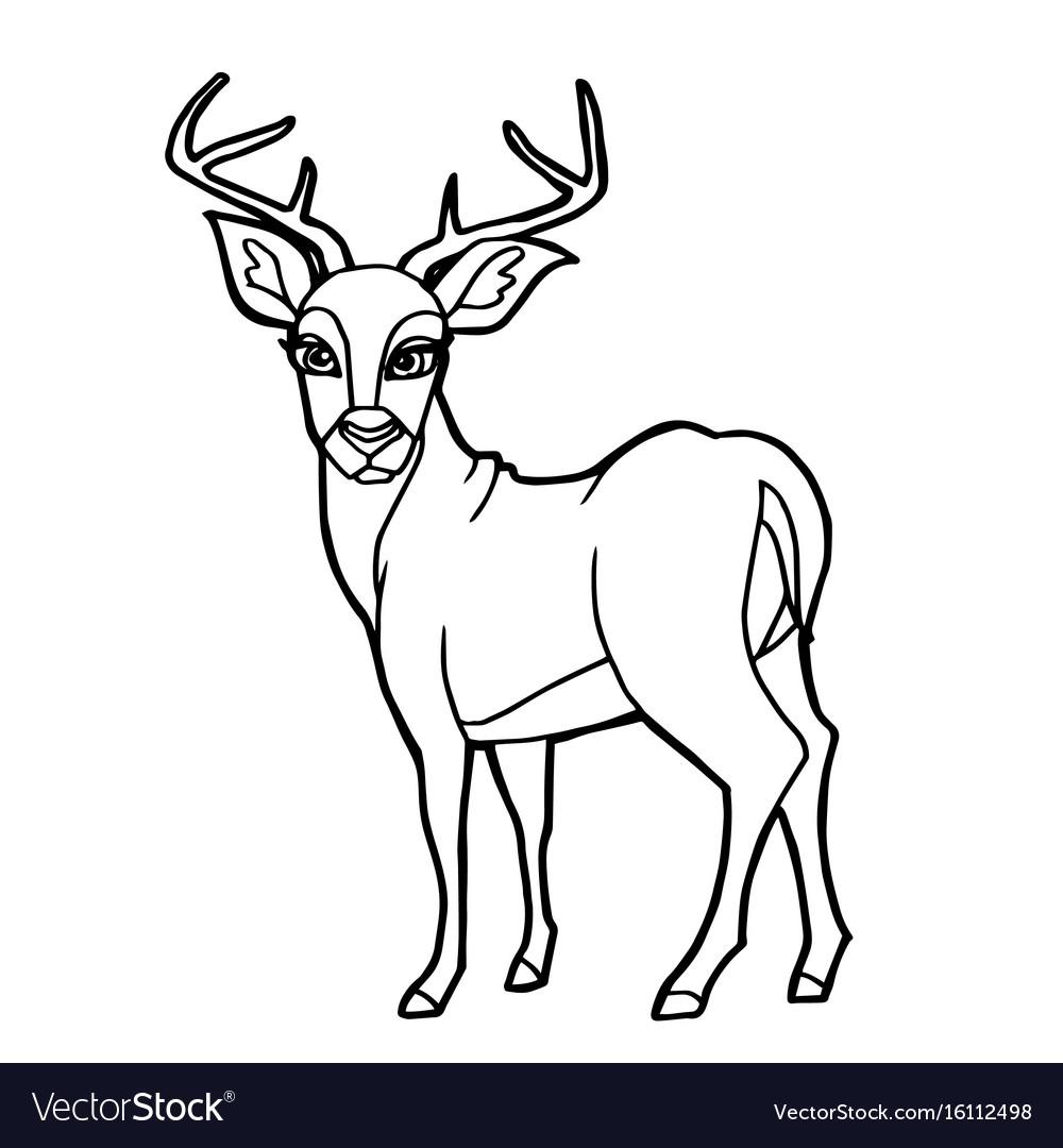 Deer Coloring Pages Cartoon Cute Deer Coloring Page