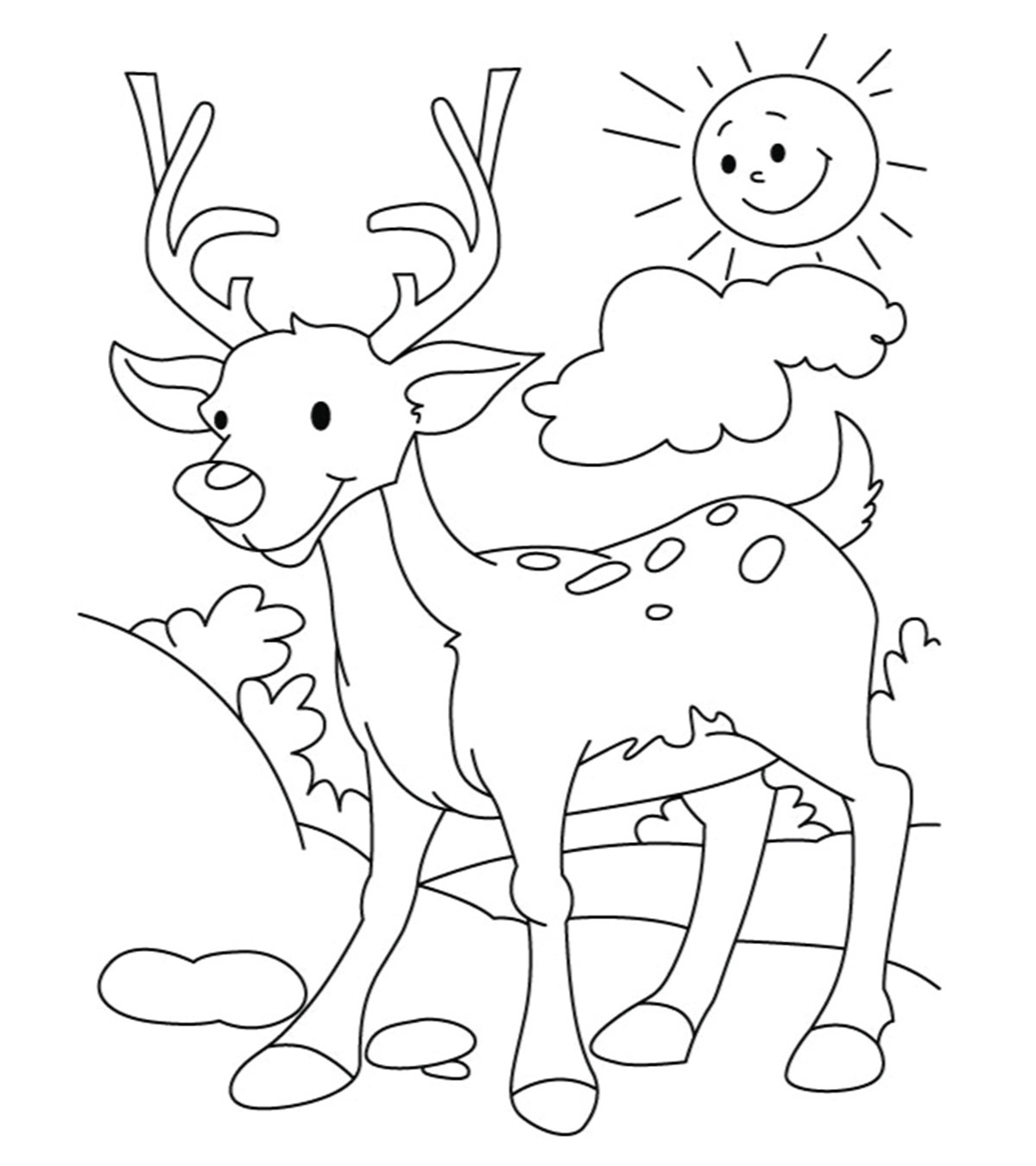 Deer Coloring Pages Top 20 Deer Coloring Pages For Your Little Ones