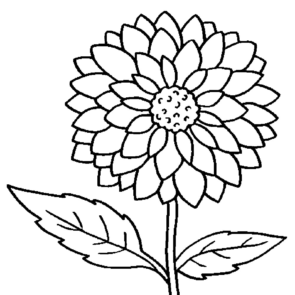 Flowers Coloring Pages Free Printable Flower Coloring Page Anyingmei