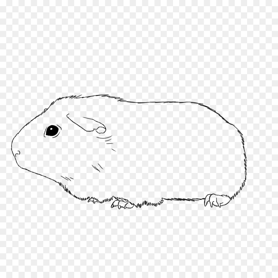Free Guinea Pig Coloring Pages Book Black And Whitetransparent Png Image Clipart Free Download