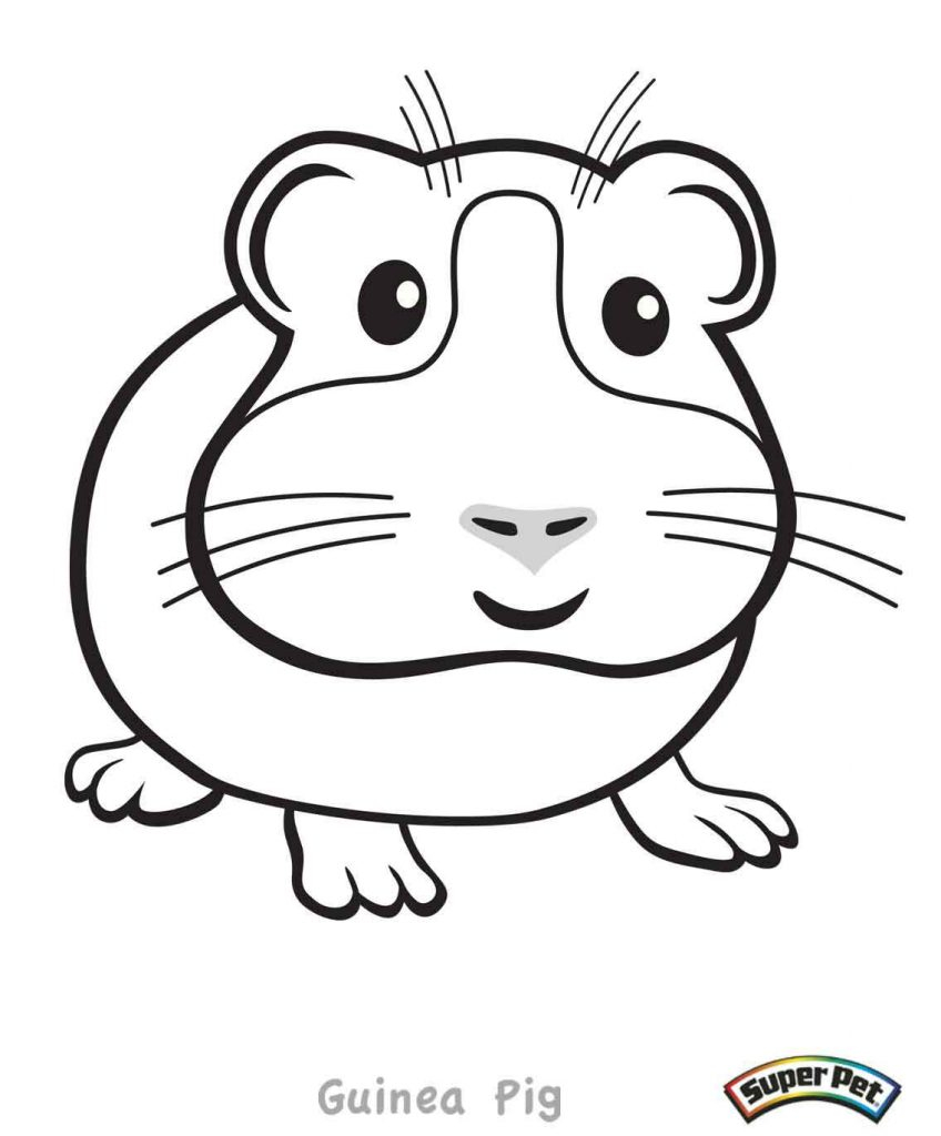 Free Guinea Pig Coloring Pages Guinea Pig Coloring Pages Books 100 Free And Printable