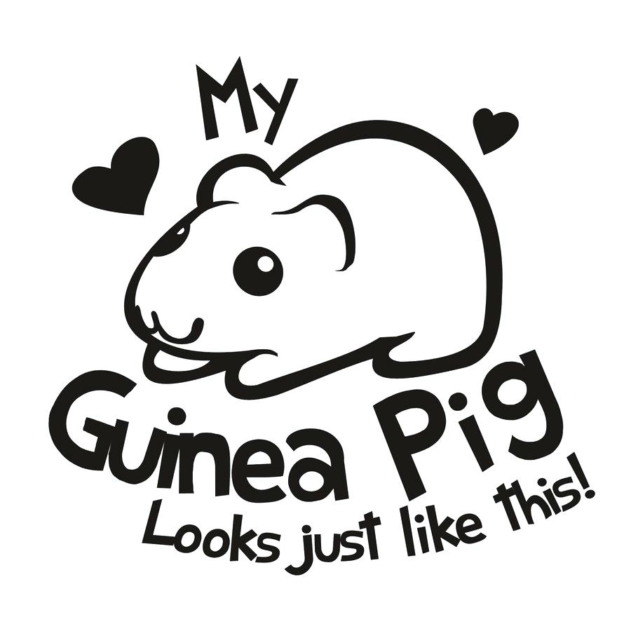 Free Guinea Pig Coloring Pages Guinea Pigs Coloring Pages Bluedotsheetco