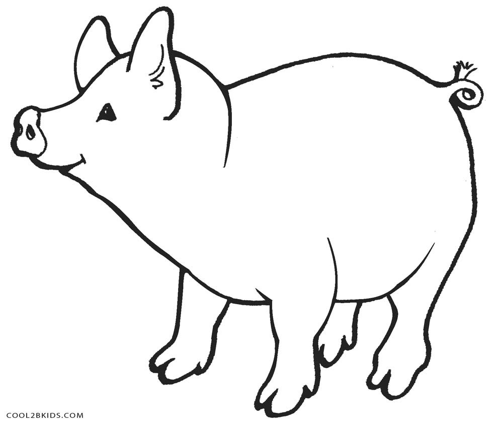 Free Guinea Pig Coloring Pages Pig Coloring Page 1 J Destiny Pig Coloring Pages Free Printable For