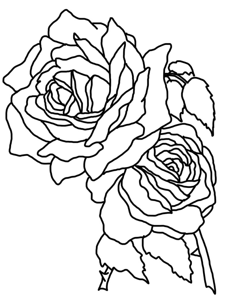 Free Rose Coloring Pages Coloring Astonishing Rose Coloring Sheetsree Printableor Daughters