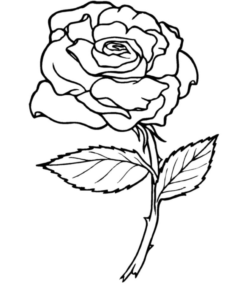 Free Rose Coloring Pages Coloring Heart Rose Banner Colouring Pages Page Art Projects