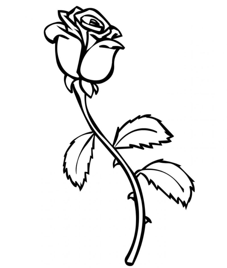 Free Rose Coloring Pages Coloring Rose Coloring Pages For Kids Free Printable Roses