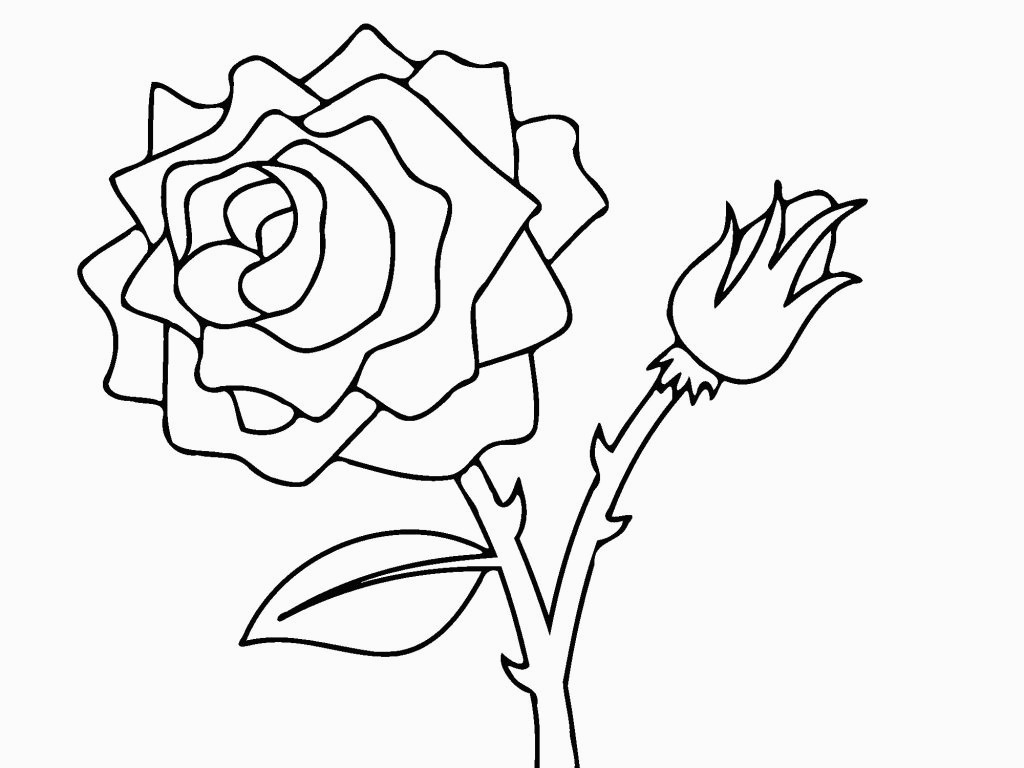 Free Rose Coloring Pages Free Printable Roses Coloring Pages For Kids For Color Pictures Of