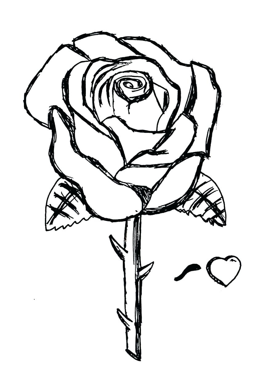 Free Rose Coloring Pages Rose Coloring Images Sandboxpaperco