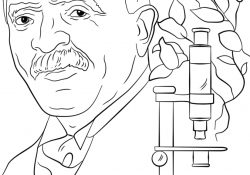 George Washington Carver Coloring Page George Washington Carver Coloring Page Free Printable Coloring Pages