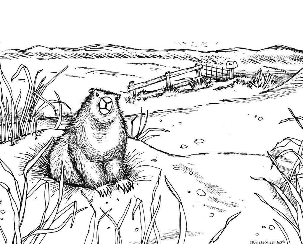 Groundhog Day Printable Coloring Pages Groundhog Day Coloring Pages Activities Many Coloring Book Free