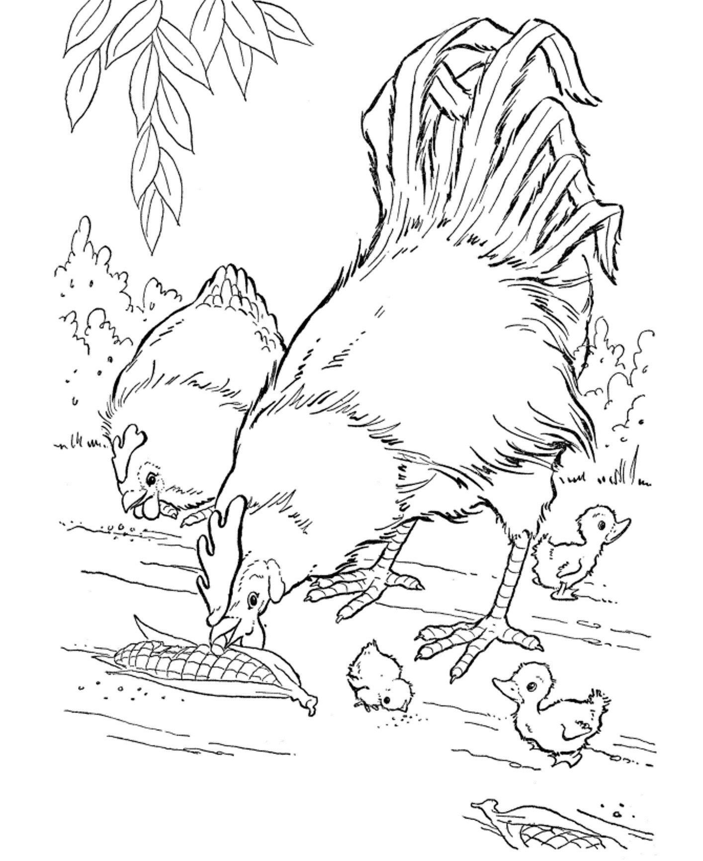 Kids Farm Coloring Pages Coloring Pages For Kids Farm Animals At Getdrawings Free For