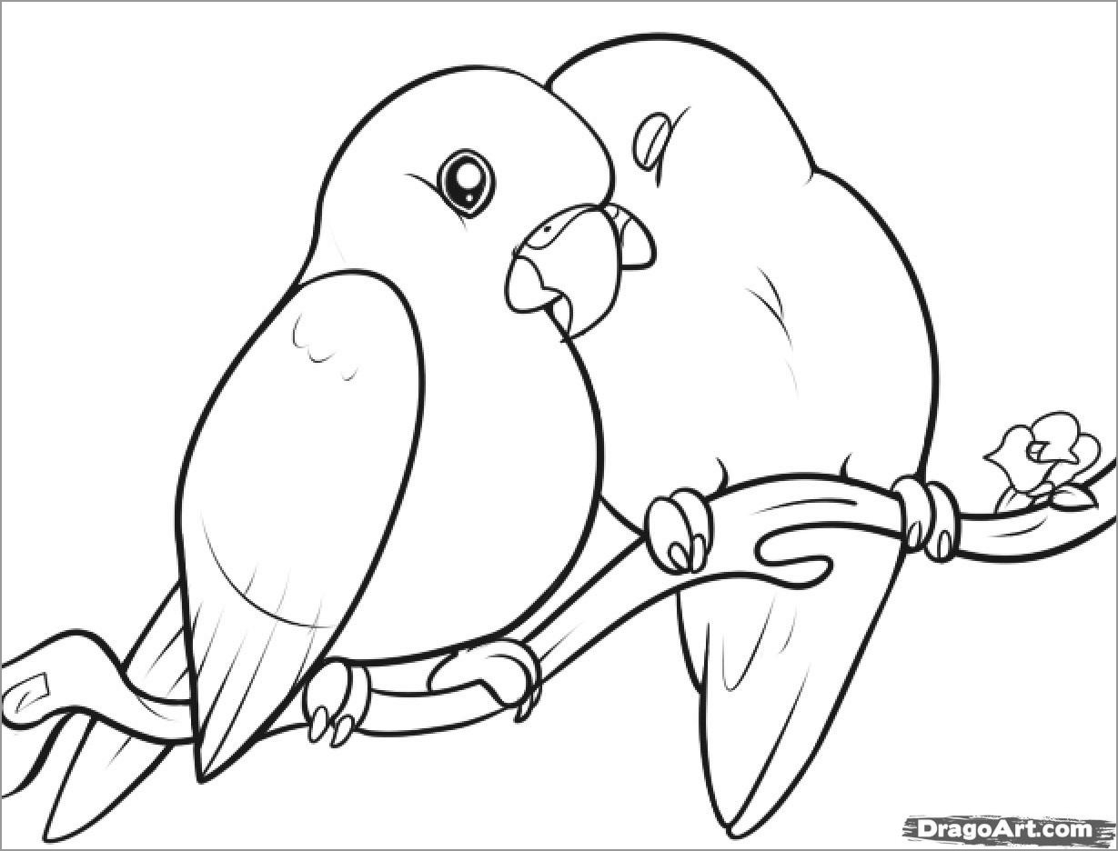 Love Bird Coloring Pages Bird Coloring Pages Coloringbay