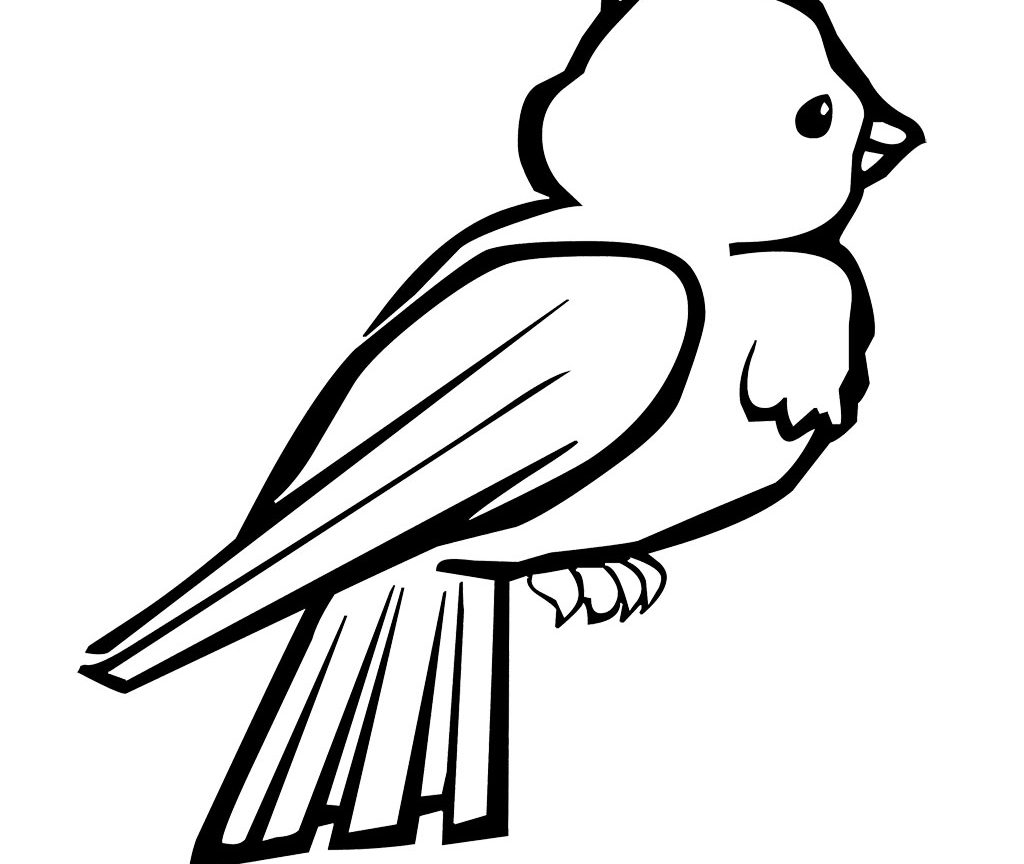 Love Bird Coloring Pages Cute Bird Drawing At Getdrawings Free For Personal Use Cute