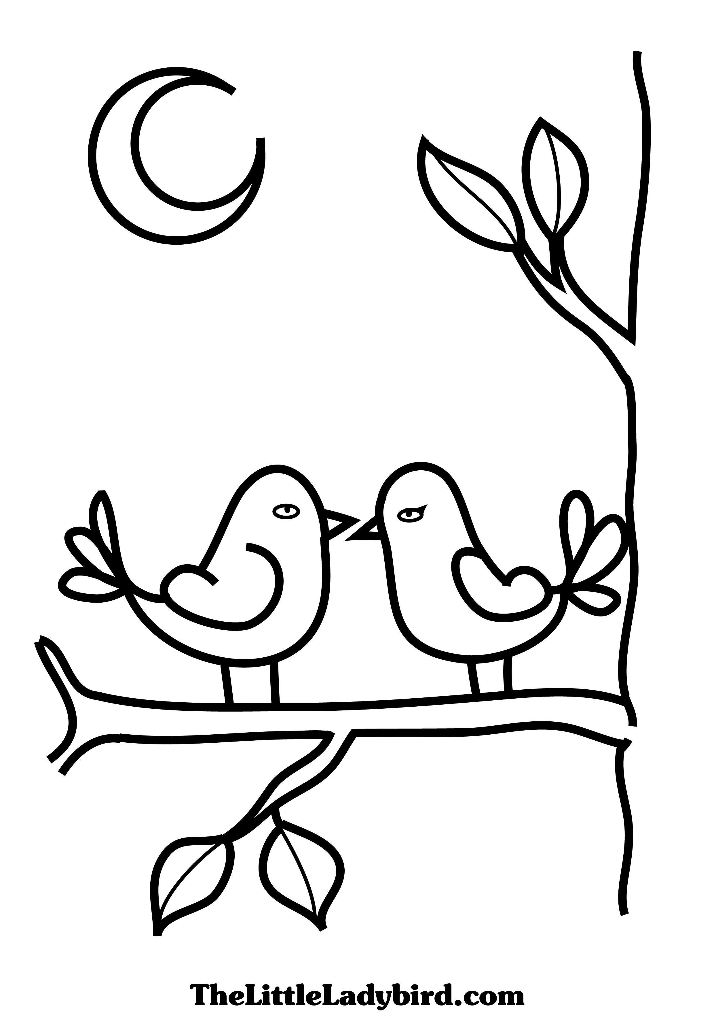 Love Bird Coloring Pages Love Birds Coloring Pages Thelittleladybird