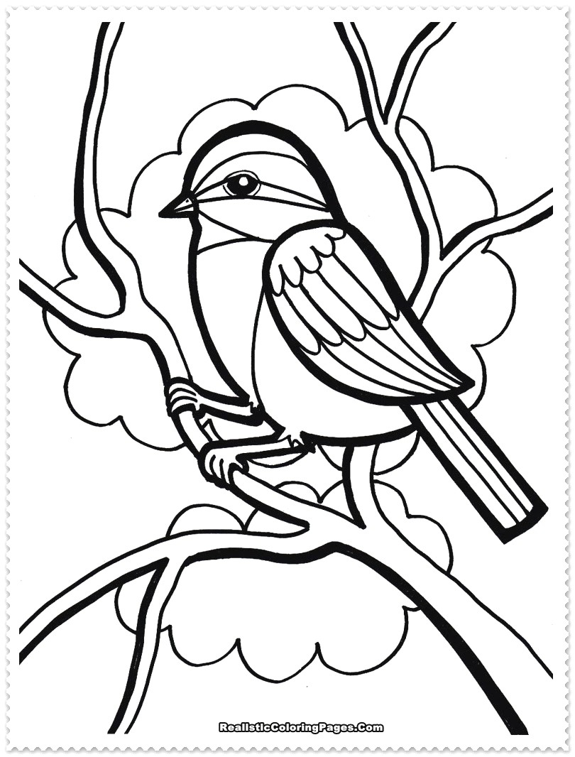Love Bird Coloring Pages Tropical Bird Coloring Pages
