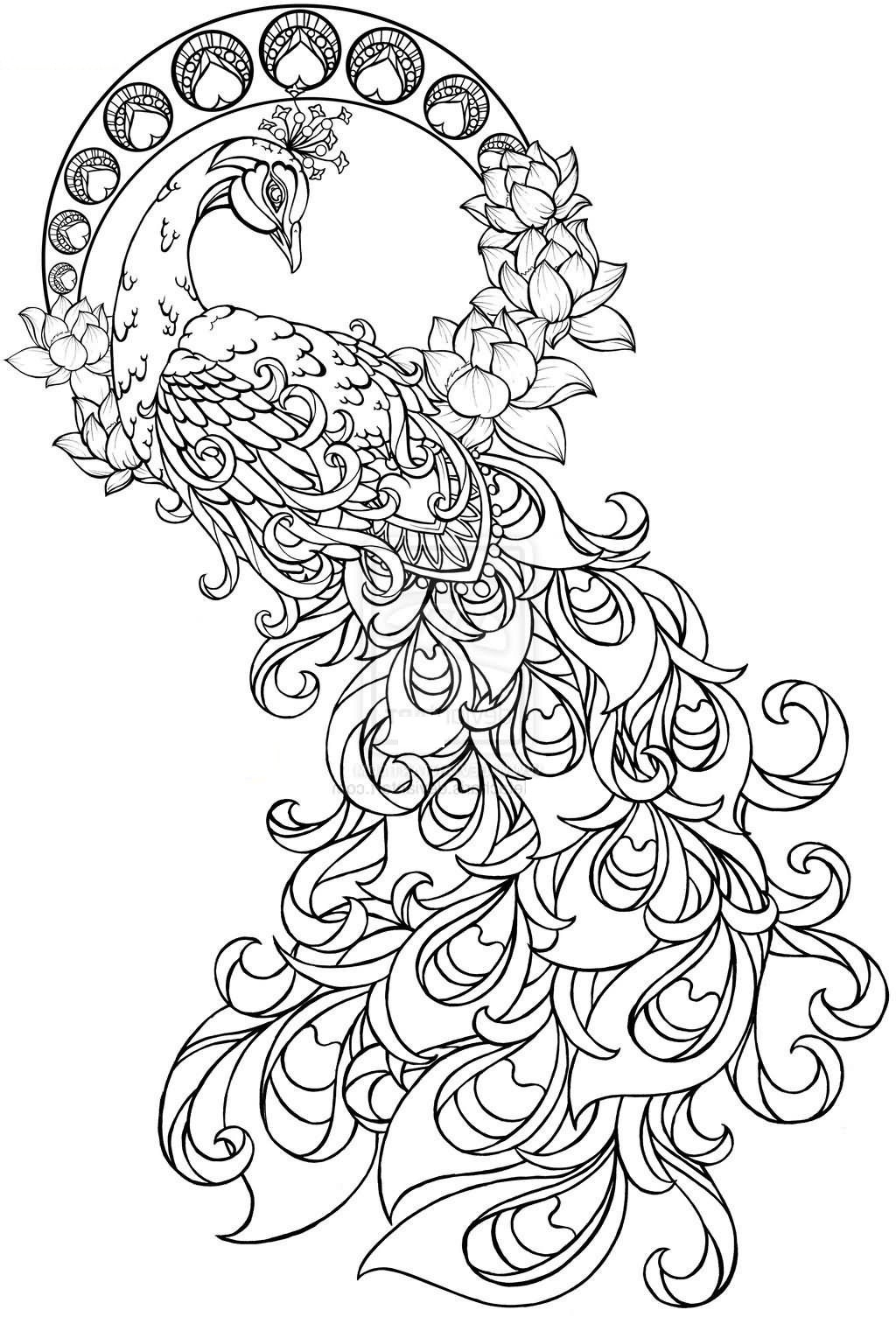Peacock Color Page Coloring Coloring Pin Elle On Color Me Crazy Adult Pages And