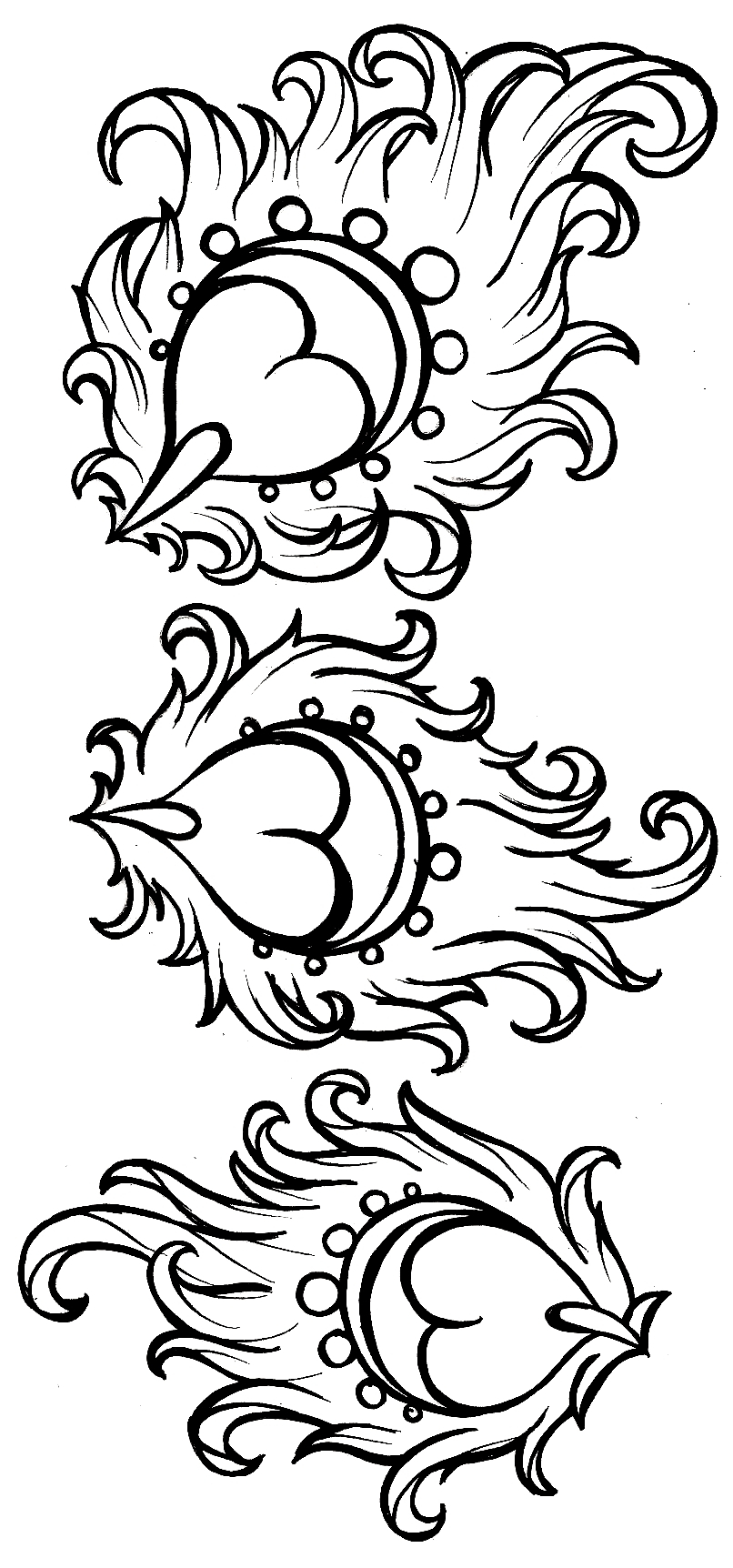 Peacock Color Page Coloring Pages Of A Peacock At Getdrawings Free For Personal