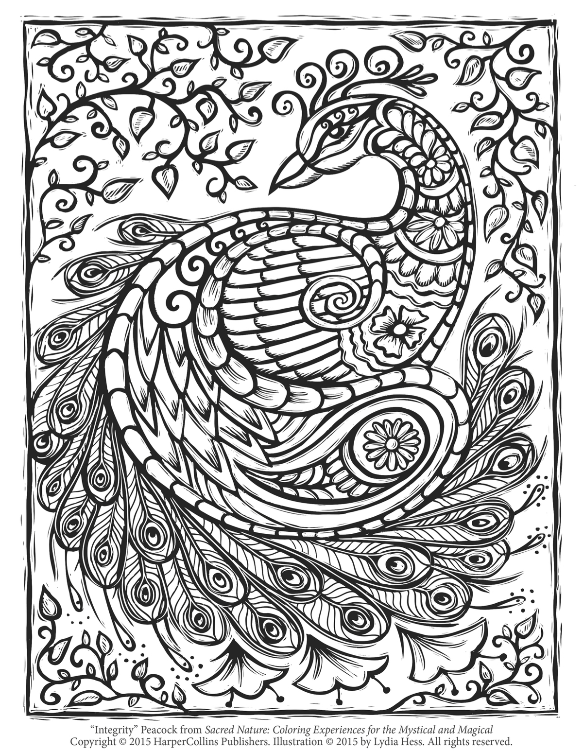 Peacock Color Page Coloring Pages Of Peacock Colored Beautiful Cute Design Online Free