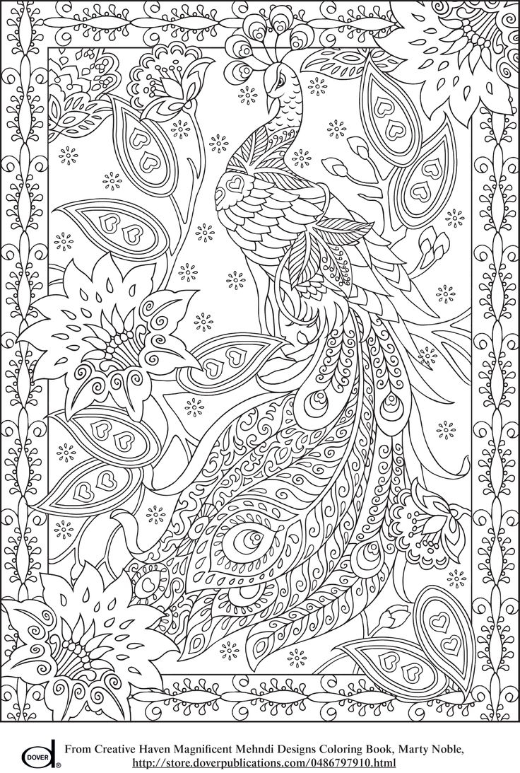 Peacock Color Page Coloring Pages Splendi Creativen Coloring Books Image Inspirations