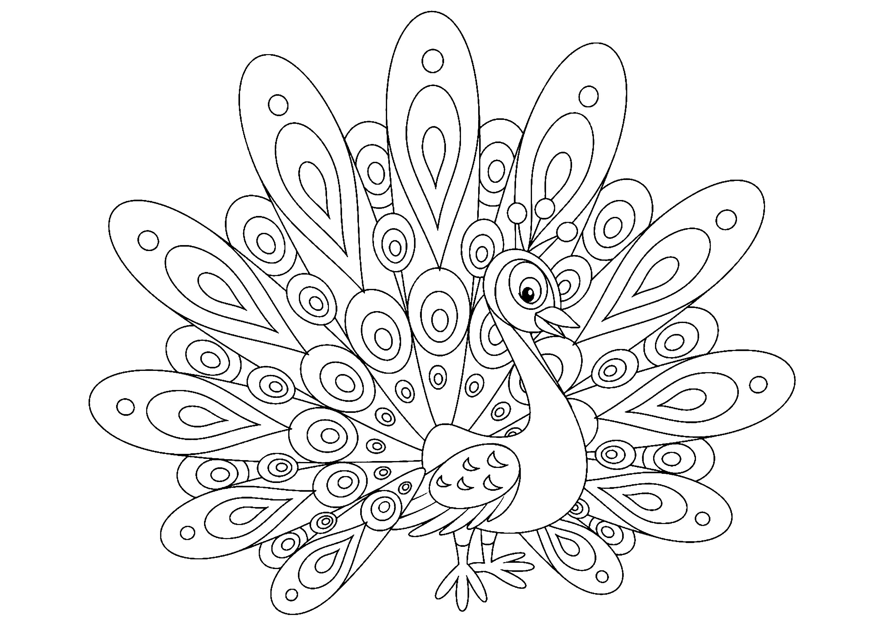 Peacock Color Page Simple Peacock Peacocks Adult Coloring Pages