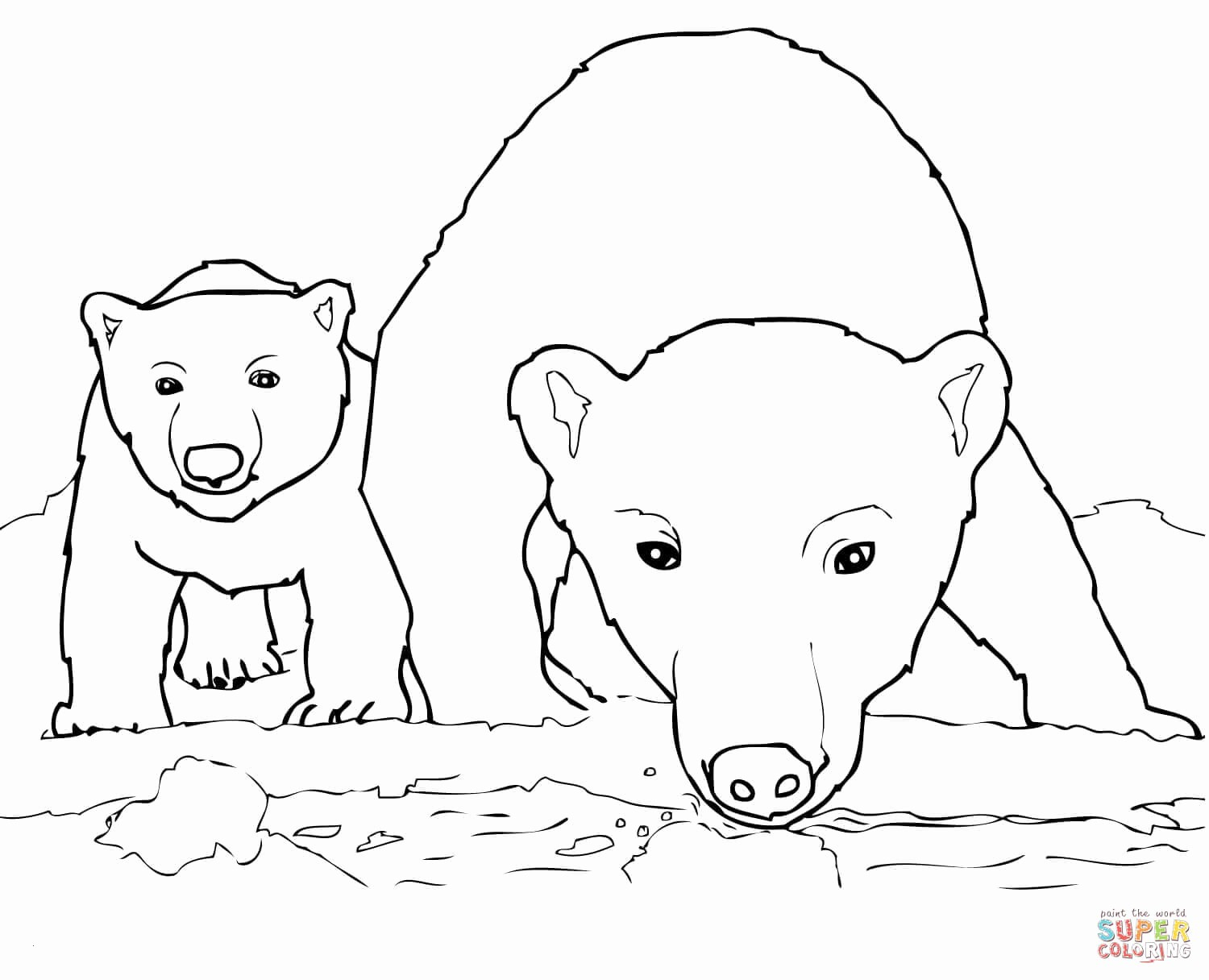 Polar Express Color Pages Polar Express Bell Coloring Pages Lovely Teddy Bear Color Pages
