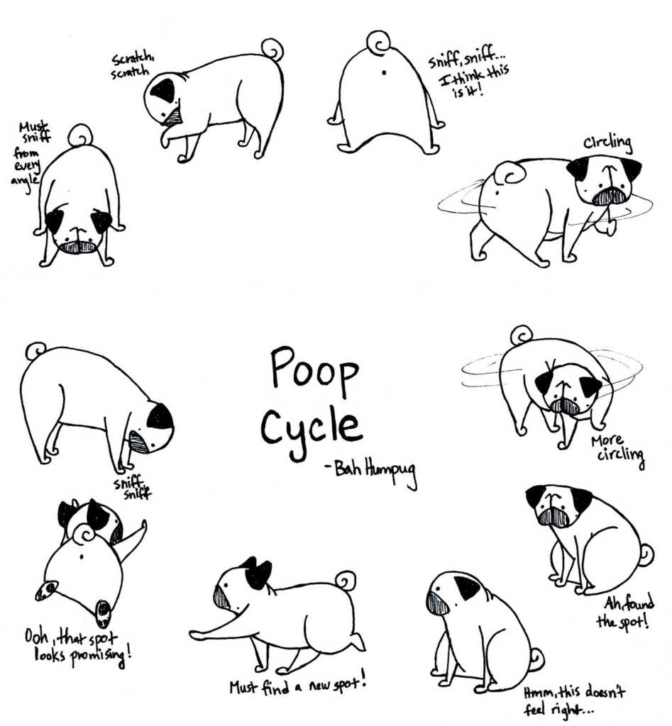 Pug Puppy Coloring Pages Best Of Easy Cute Pug Coloring Pages Design Great Collection