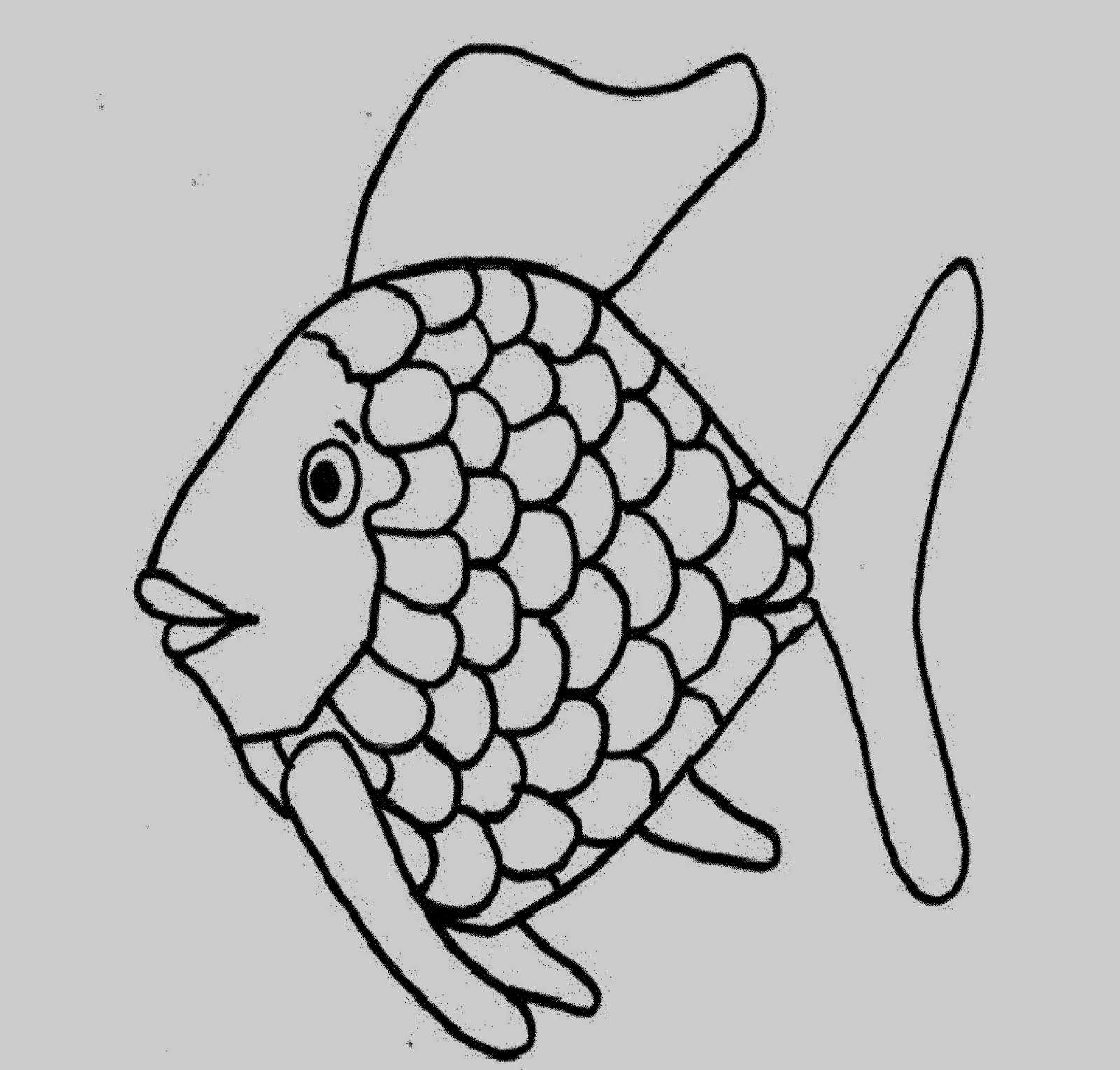 Rainbow Fish Coloring Pages Preschoolers 12 Cute Rainbow Fish Coloring Page Kanta