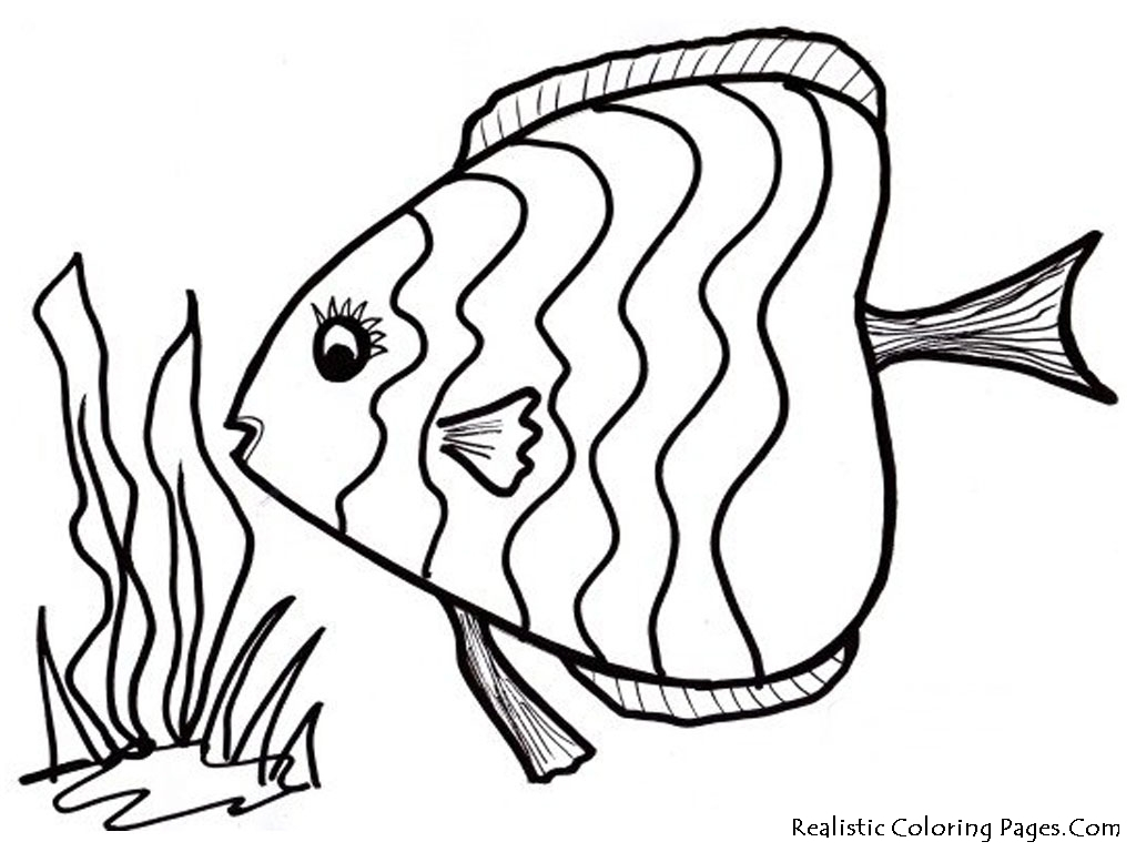 Rainbow Fish Coloring Pages Preschoolers Easy Fish Coloring Pages At Getdrawings Free For Personal Use