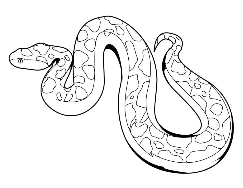 Rattle Coloring Page Coloring Real Snake Coloring Pages Printable Free For Adults Sheet