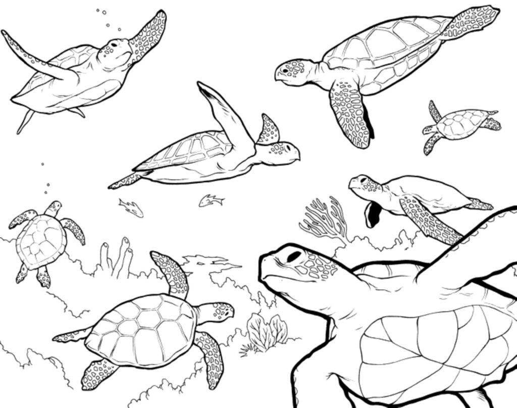 Sea Monster Coloring Pages Destiny 2 Coloring Pages Sea Monster Unique Free Creature