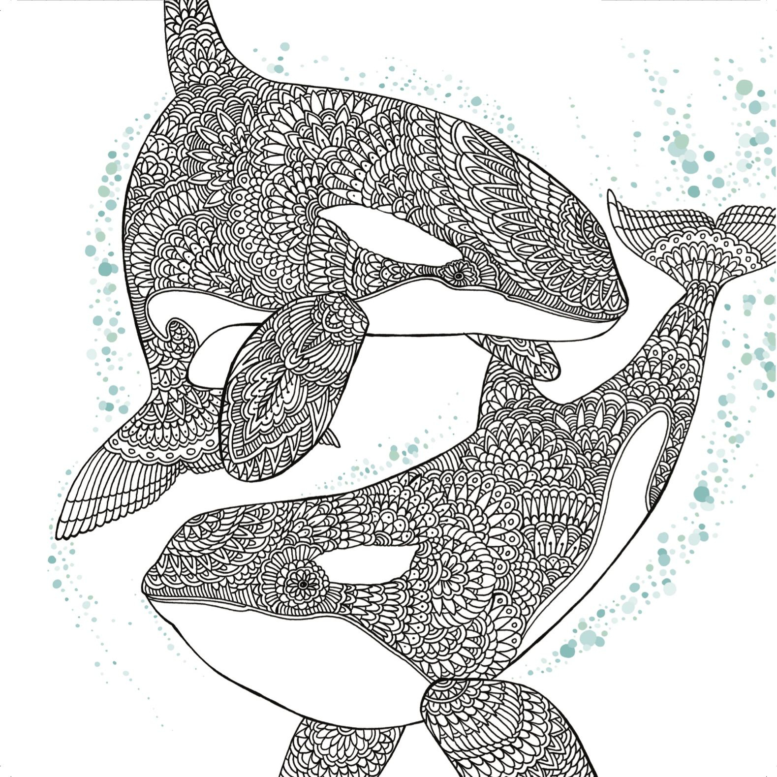 Shamu Coloring Pages Coloring Pages For Kids Orca Printable Coloring Page For Kids