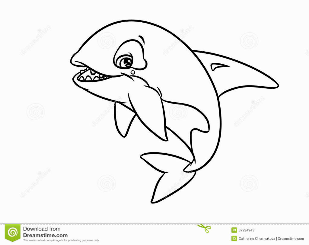 Shamu Coloring Pages Coloring Pages Page 7 Coloring Pages Gallery