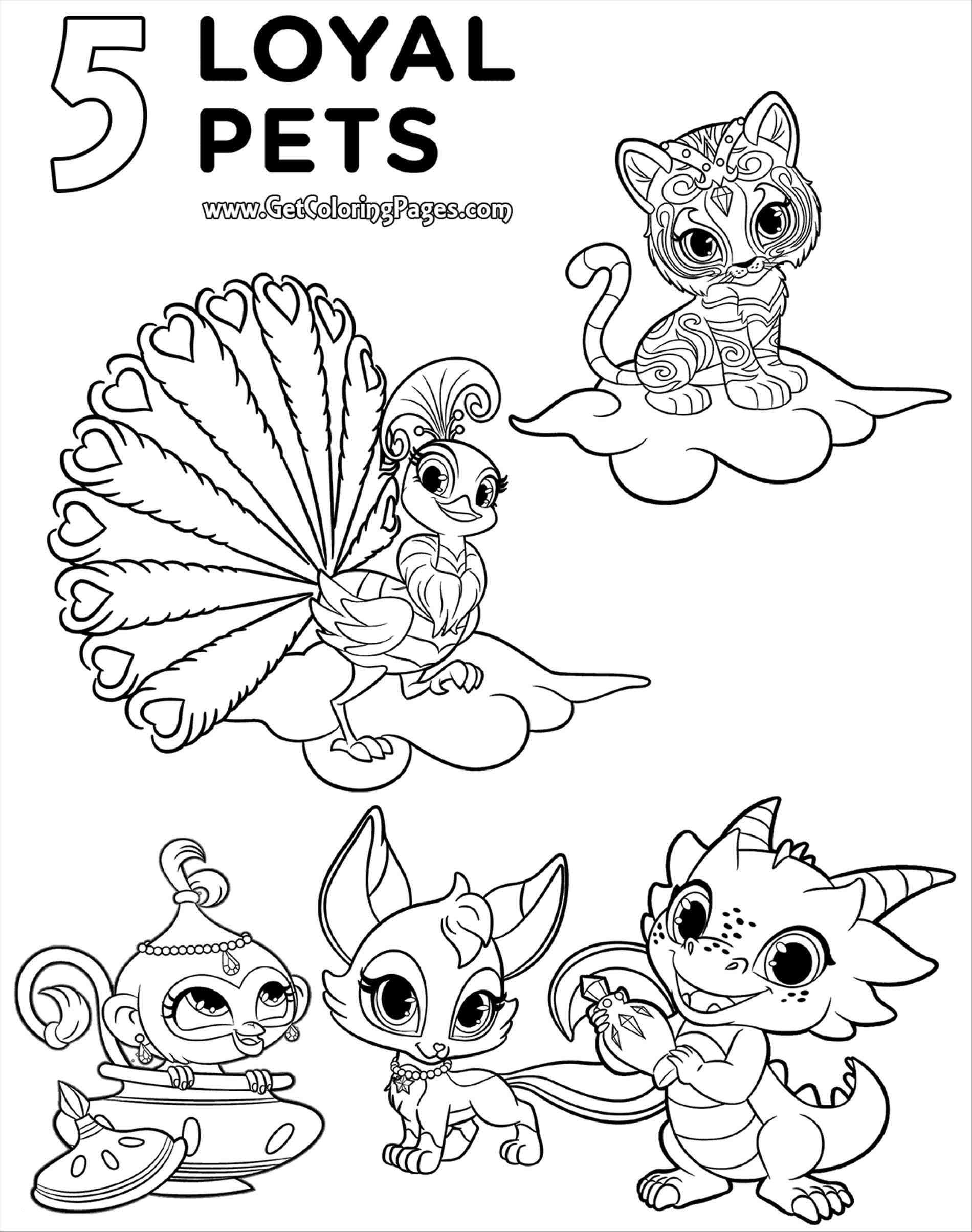 Shimmer And Shine Coloring Pages To Print 23 Shimmer And Shine Coloring Pages Collection Coloring Sheets