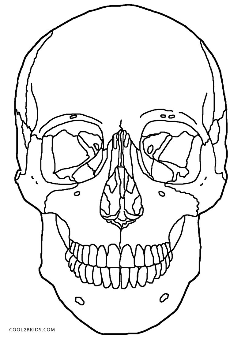 Skull Color Pages Printable Skulls Coloring Pages For Kids Cool2bkids
