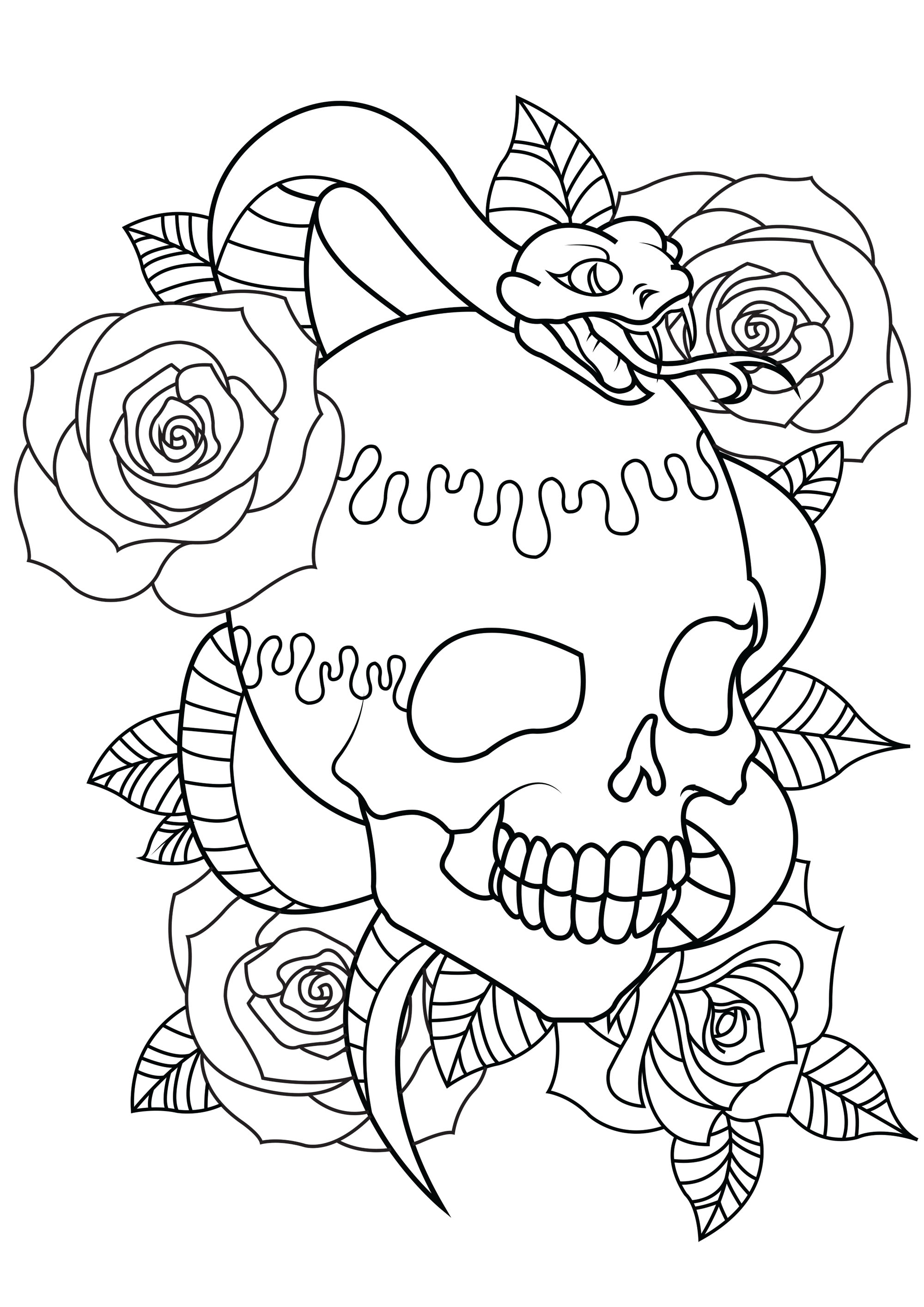 Skull Color Pages Skull Coloring Pages For Adults