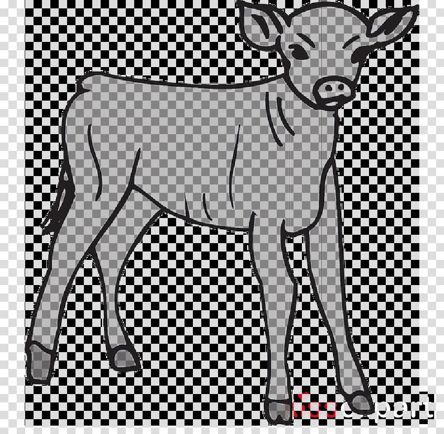The Golden Calf Coloring Page Calf Coloring Book Golden Calf Transparent Png Image Clipart