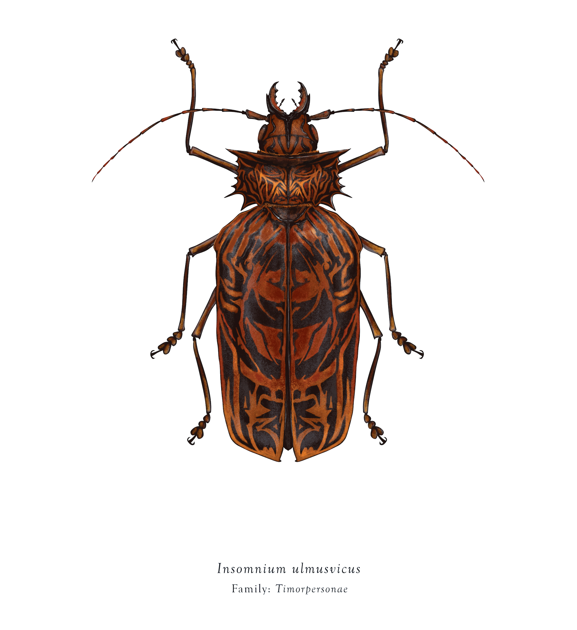 The Very Clumsy Click Beetle Coloring Pages Pop Culture Colossal